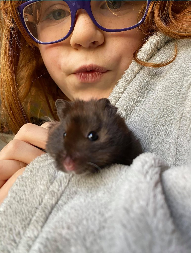 close-up photo of a little girl holding a hampster