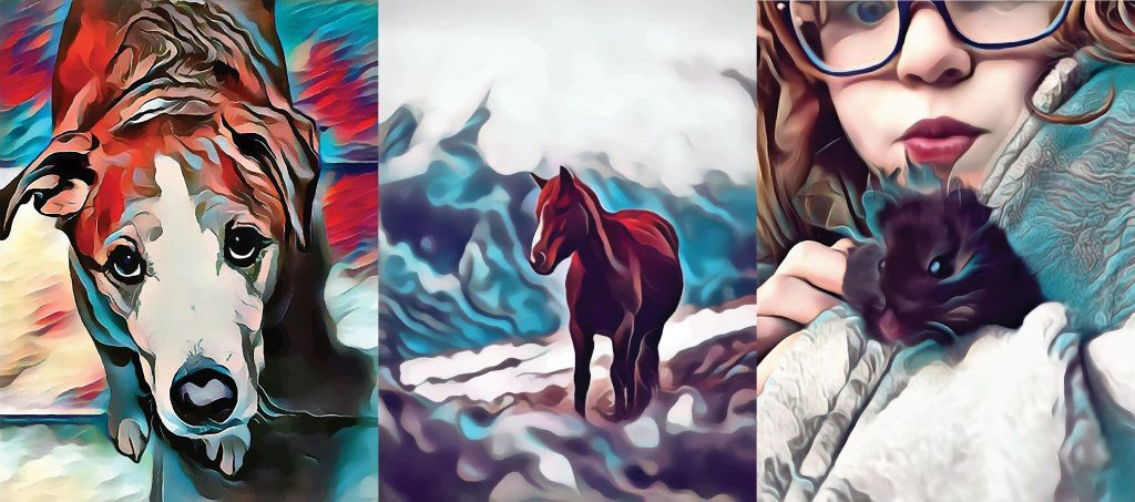 Three images all stylized in turquoise and red: left is a dog looking up at the viewer, middle is a horse, right is a girl holding a hampster.