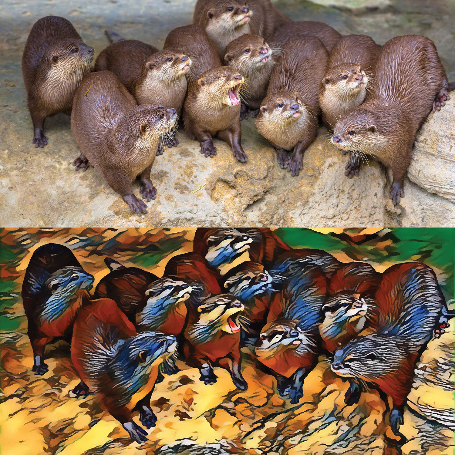 Before and after stylized image of a group of chattering otters