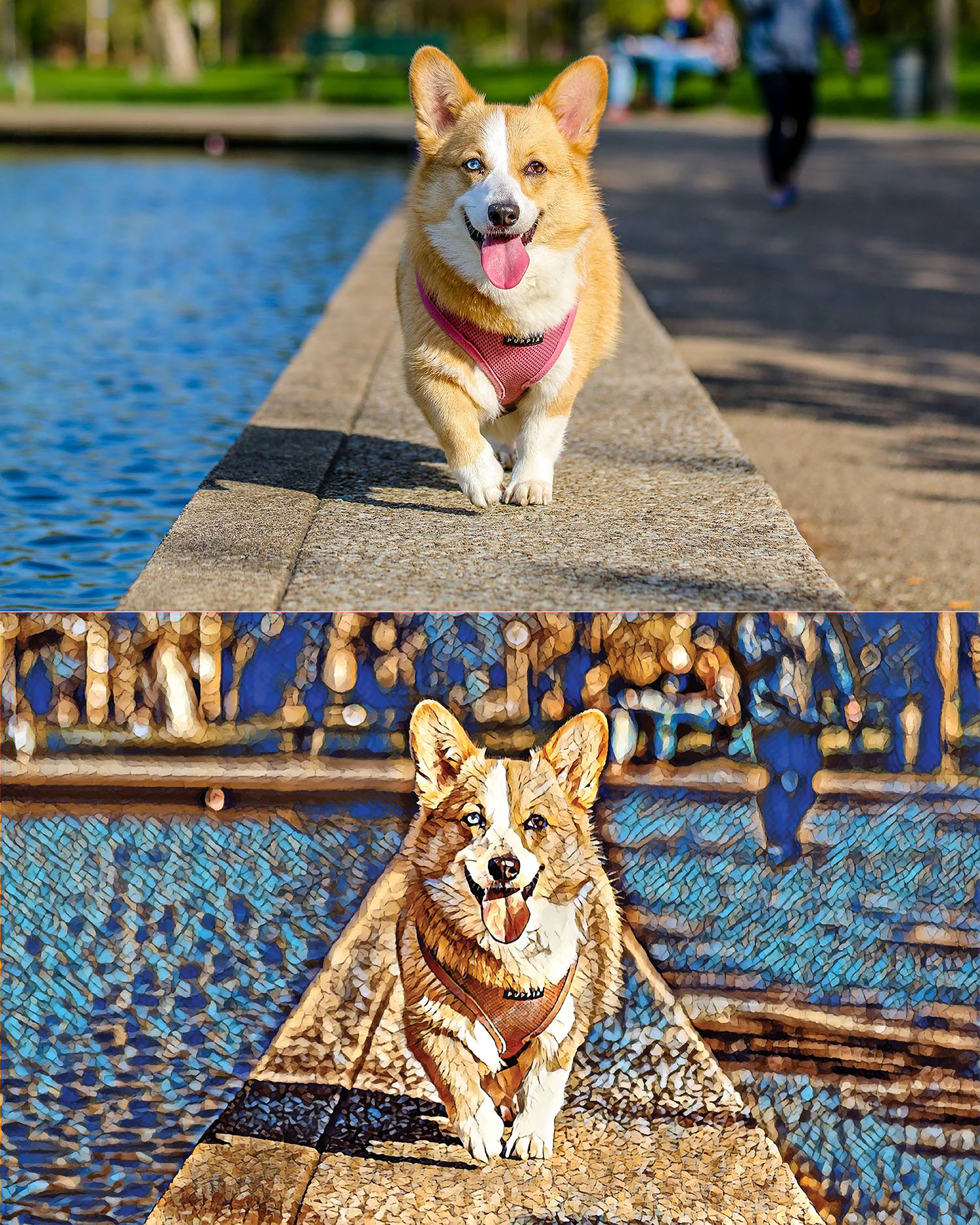 Before and after stylized image of a corgi walking on a cement barrier by the water