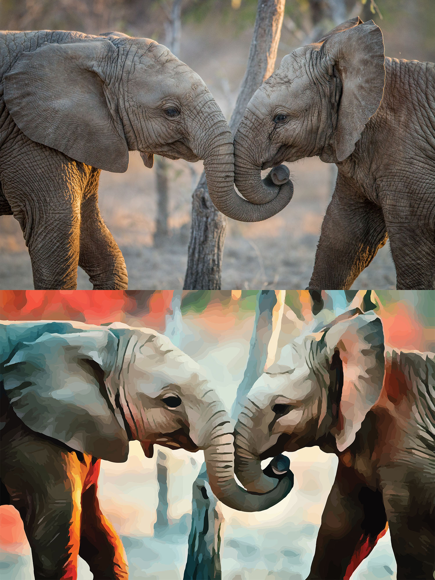 Before and after stylized image of two elephants entwining their trunks