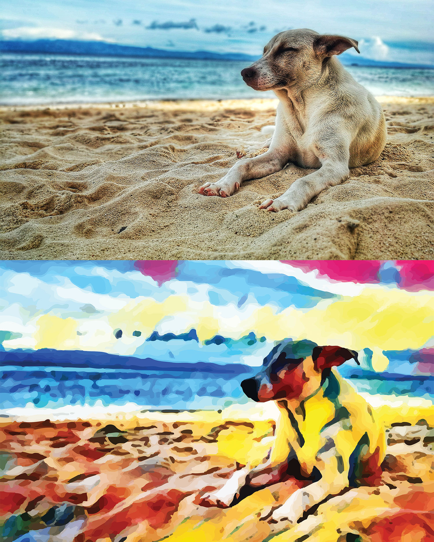 Before and after stylized image of a dog with closed eyes lying on a beach