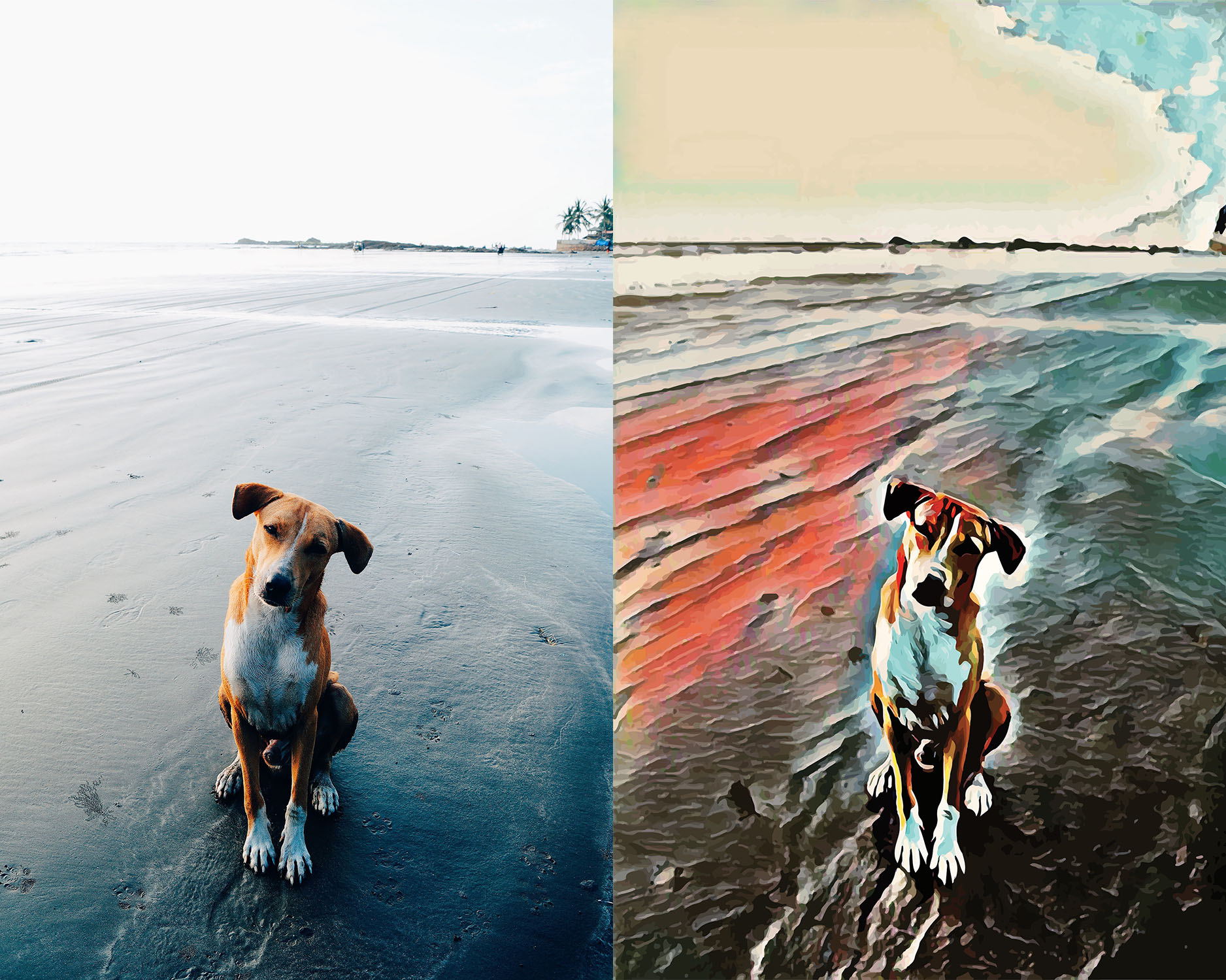 Before and after stylized image of a big dog sitting on a beach with its head cocked to one side