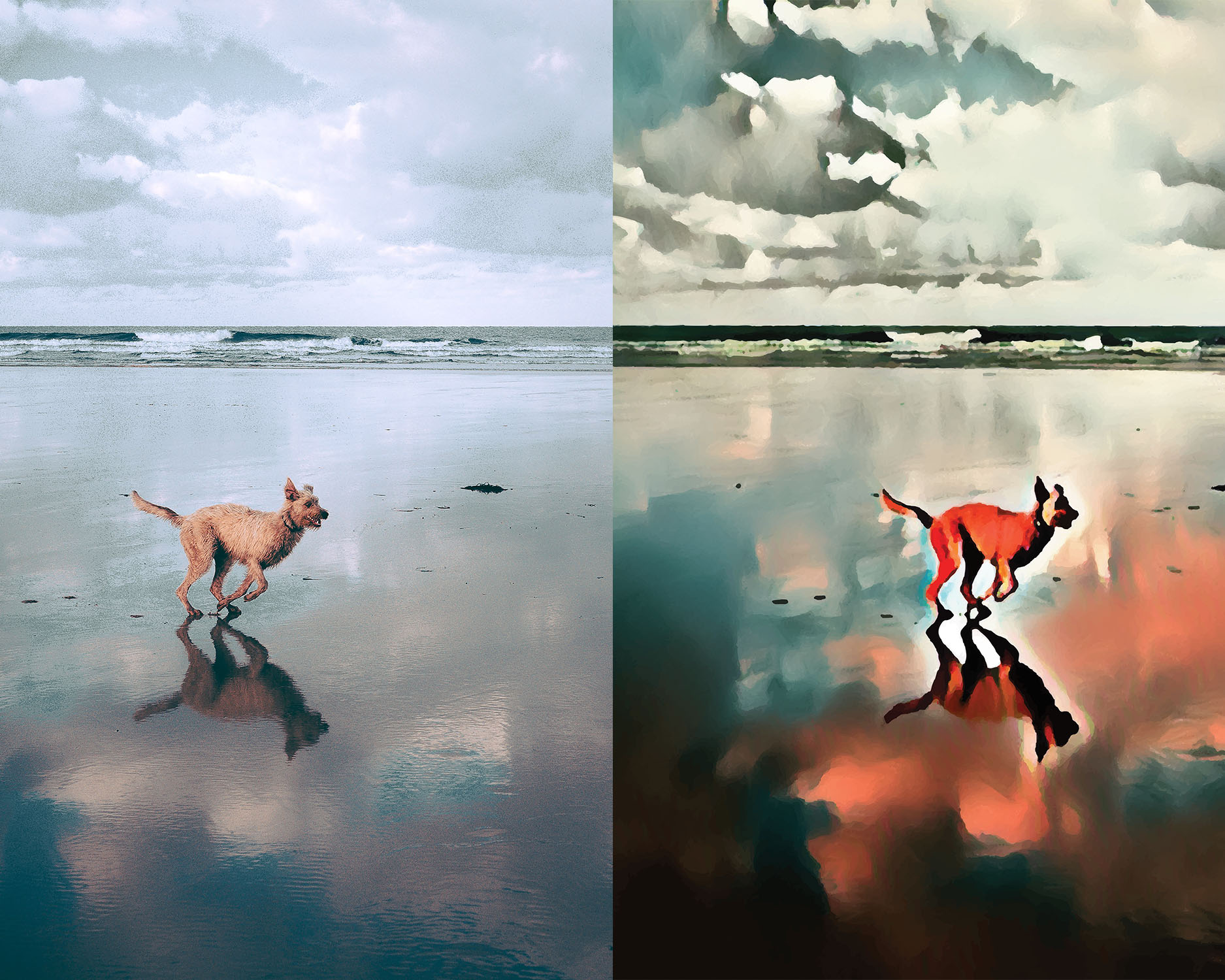 Before and after stylized image of a dog running on a glassy beach