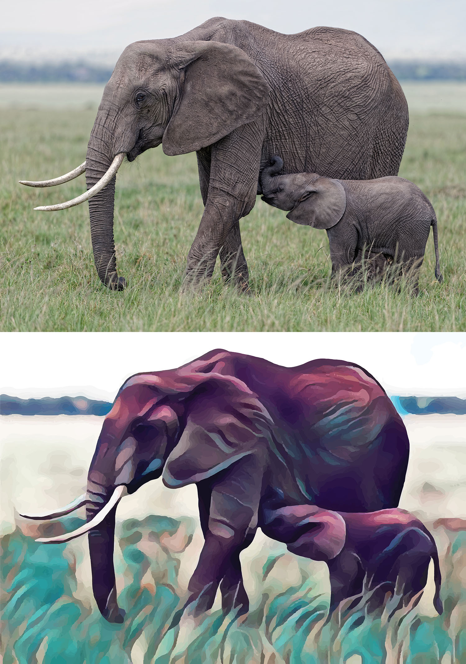 Before and after stylized image of a mama and baby elephant