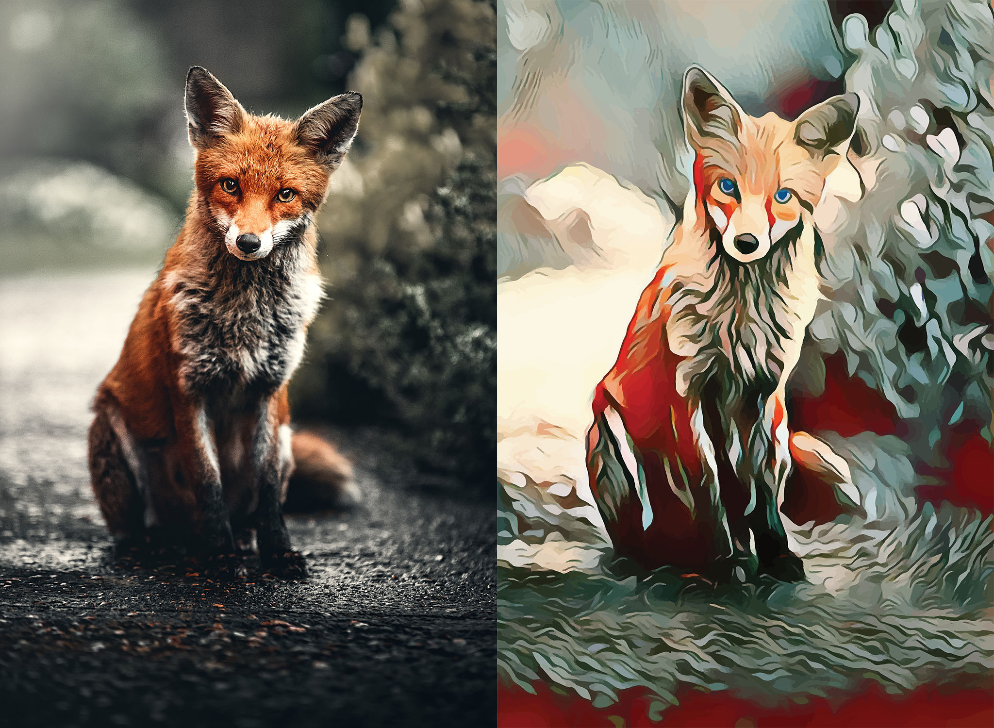 Before and after stylized image of a fox looking into the camera
