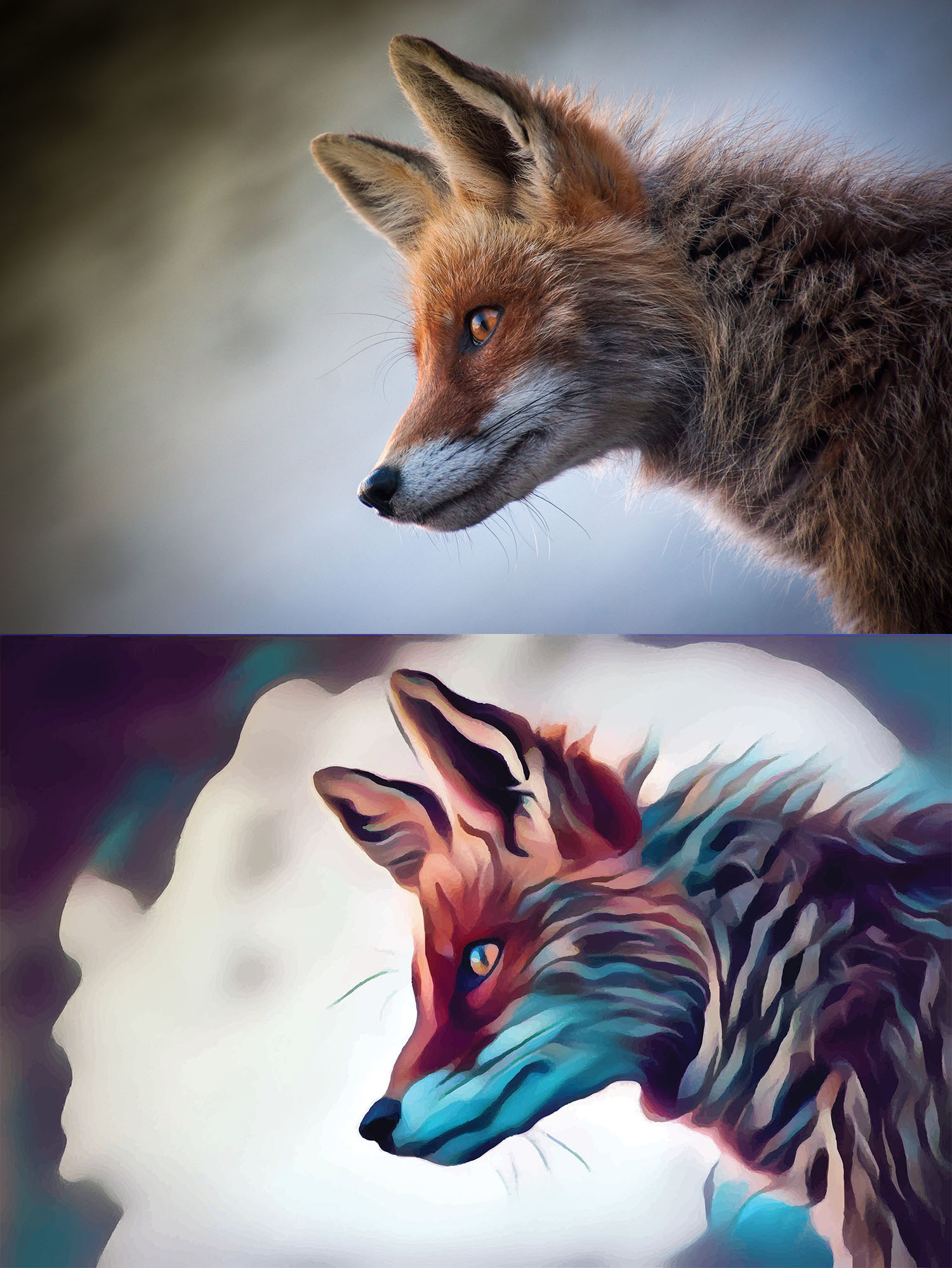 Before and after stylized image of a fox's head in profile