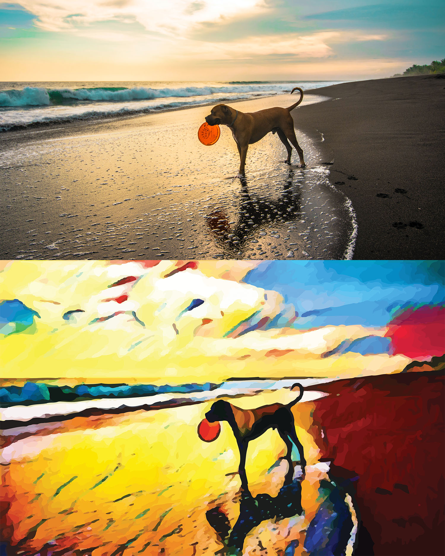Before and after stylized image of a big dog standing on a beach with a frisbee in its mouth