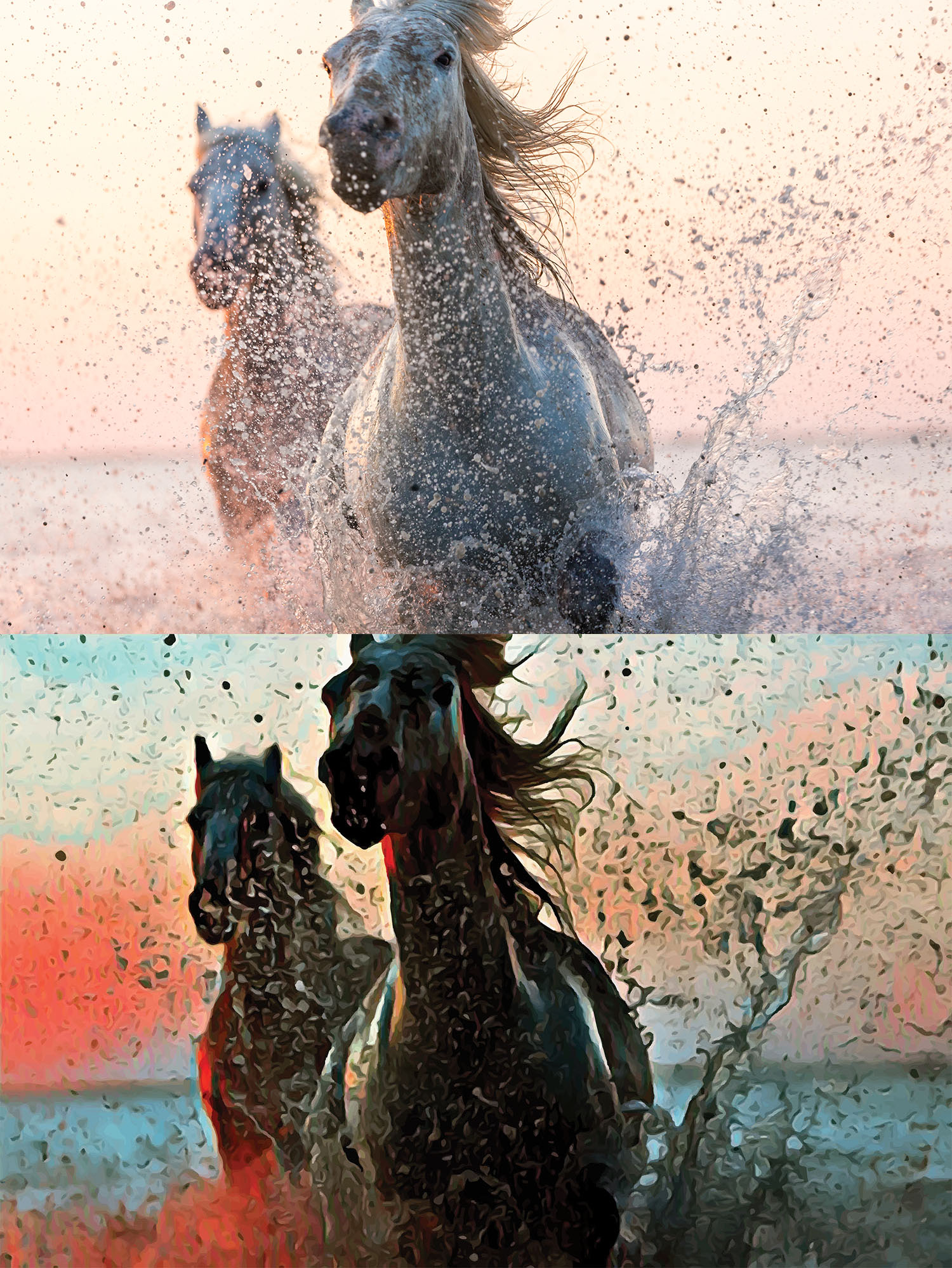 Before and after stylized image of wild horses running in the waves spraying up water