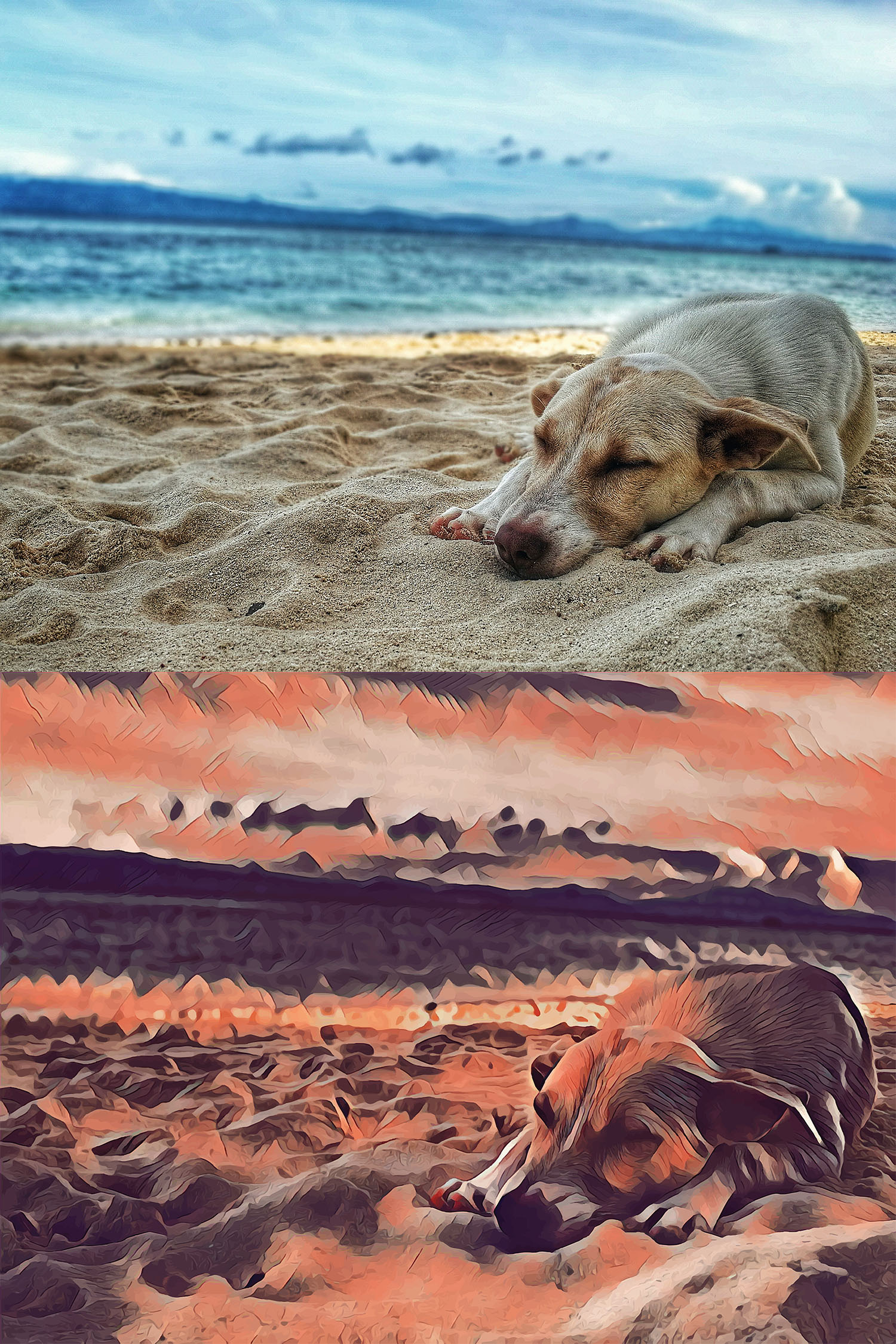 Before and after stylized image of a dog sleeping on the beach