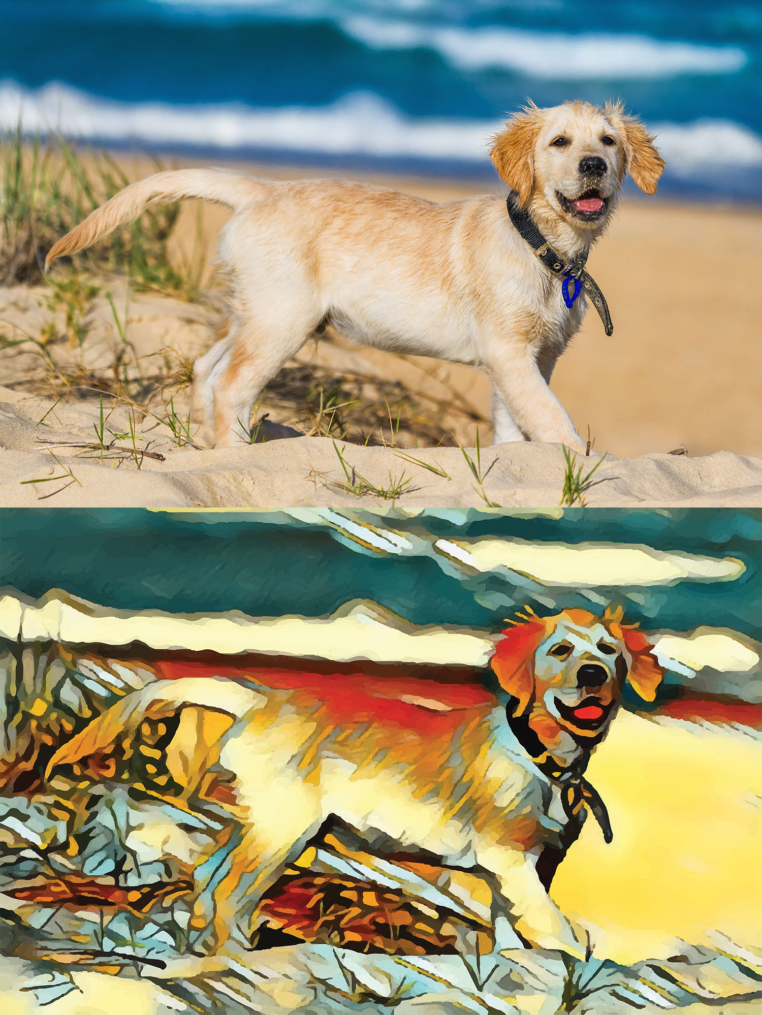 Before and after stylized image of a golden retriever puppy on a beach