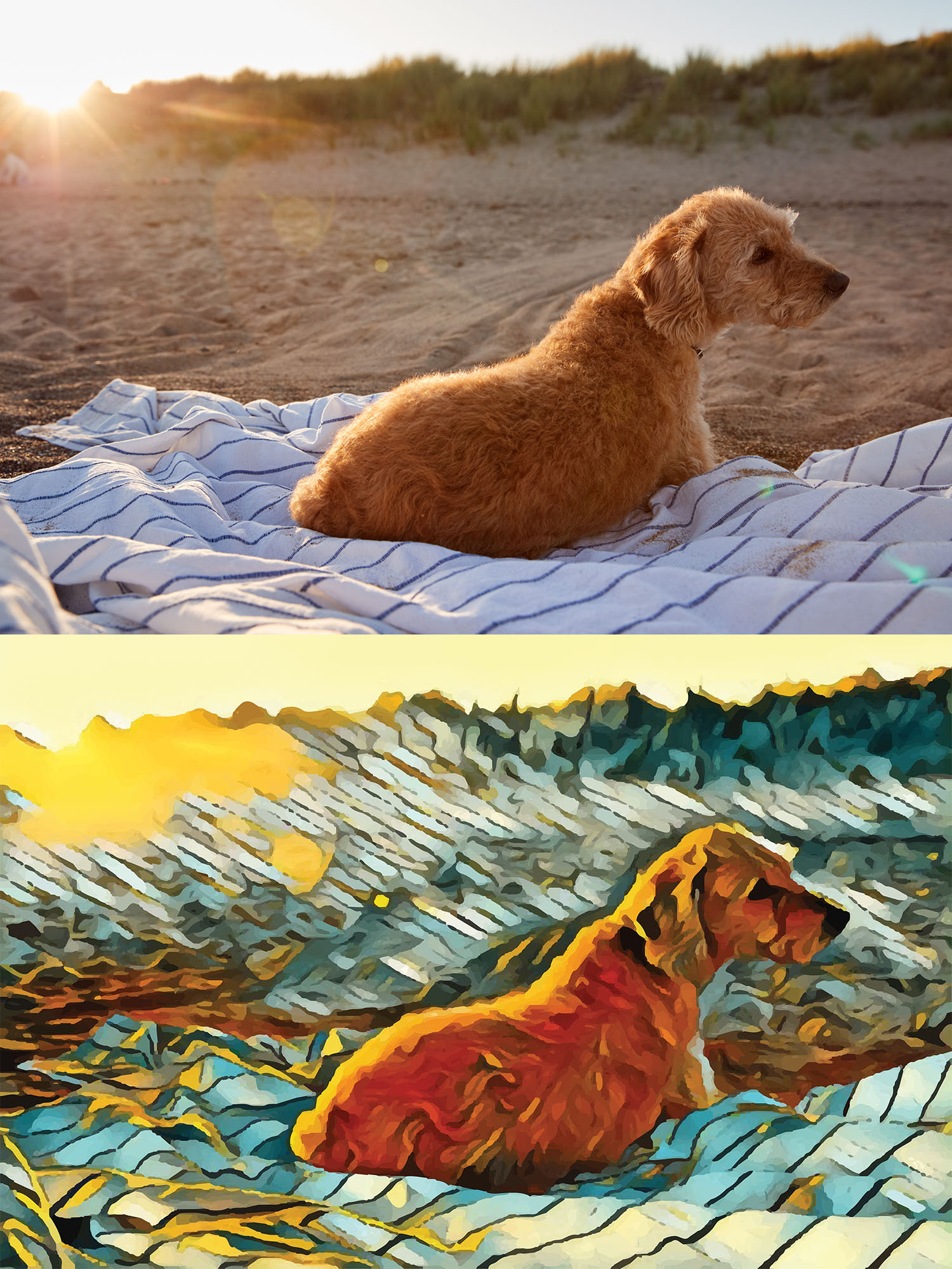 Before and after stylized image of a dog on a blanket on a beach