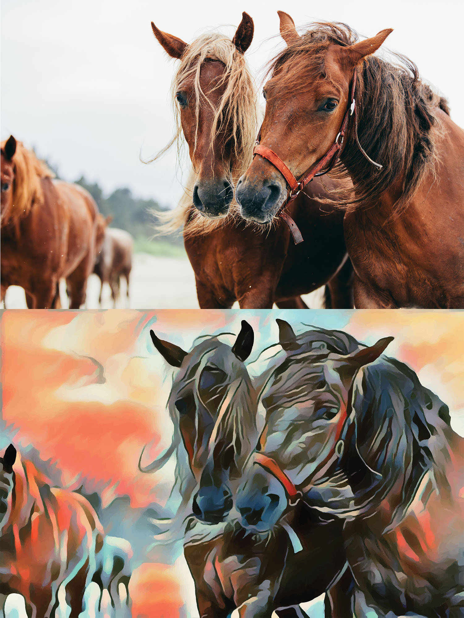 Before and after stylized image of two horses with their faces close together