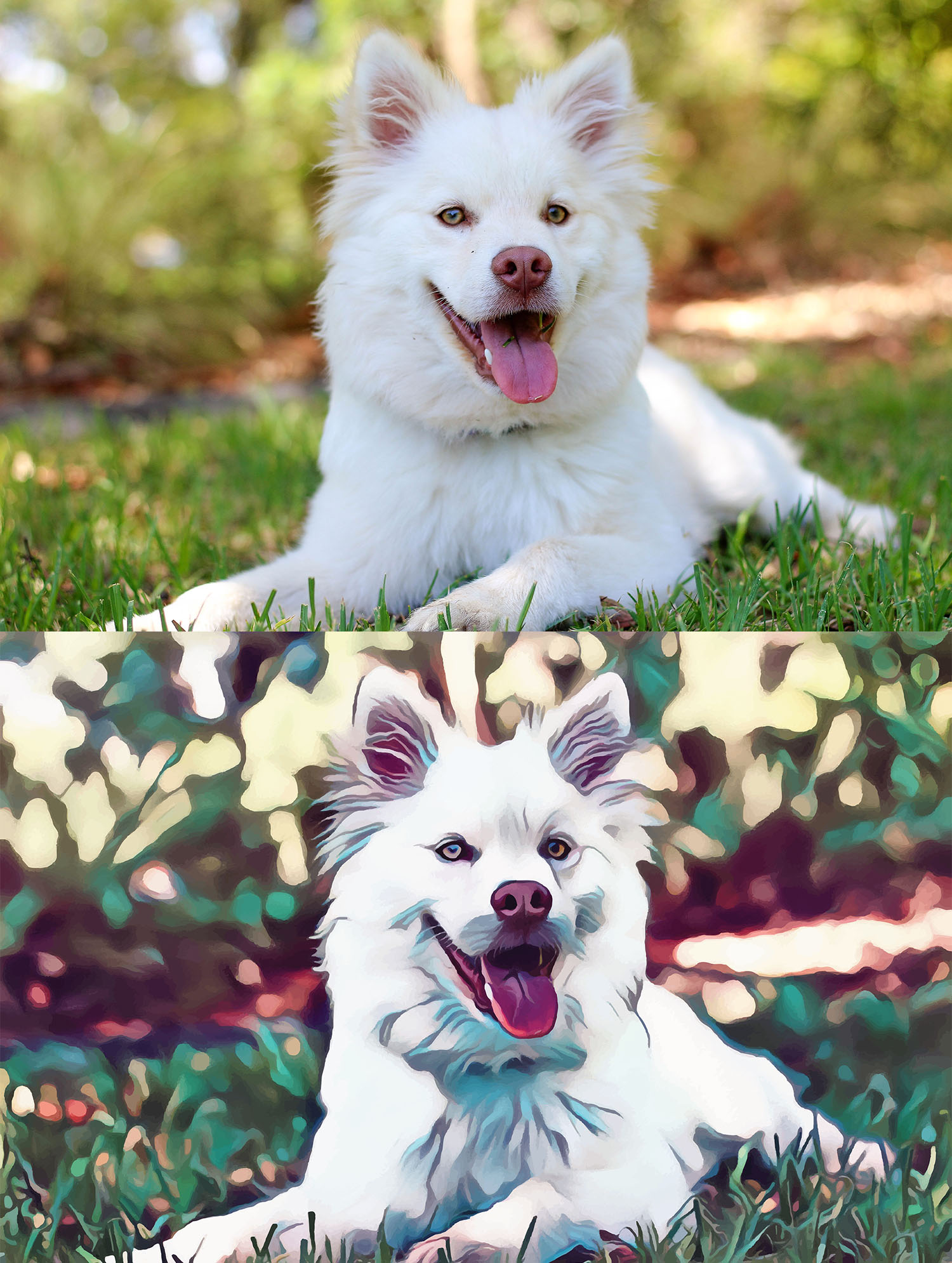 Before and after stylized image of a white dog sitting in the grass