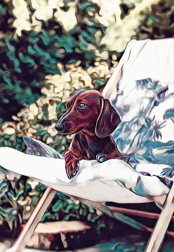 Stylized image of a dachshund lying on a patio chair