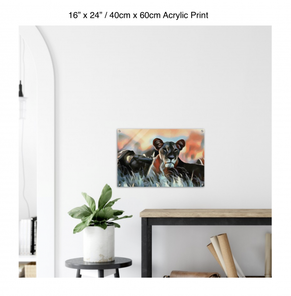 24 inch by 16 inch acrylic print of a lioness hanging over a shelf next to a small table with a plant