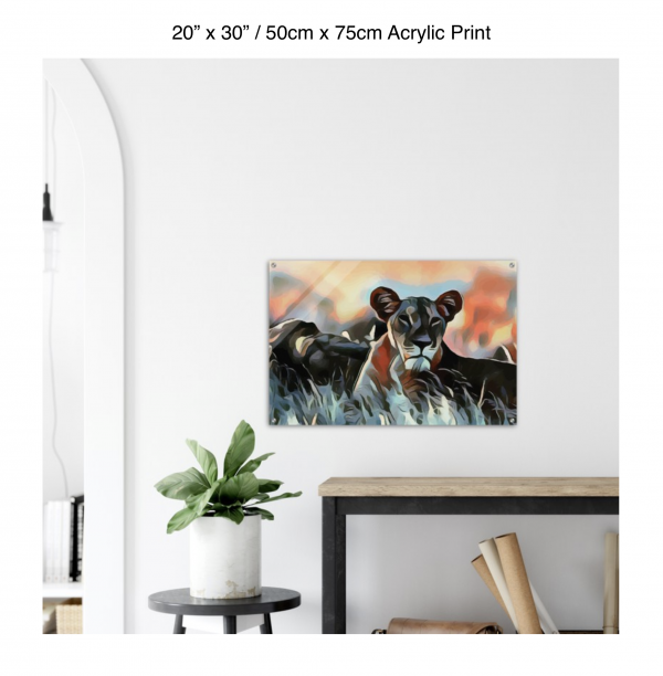 30 inch by 20 inch acrylic print of a lioness hanging over a shelf next to a small table with a plant