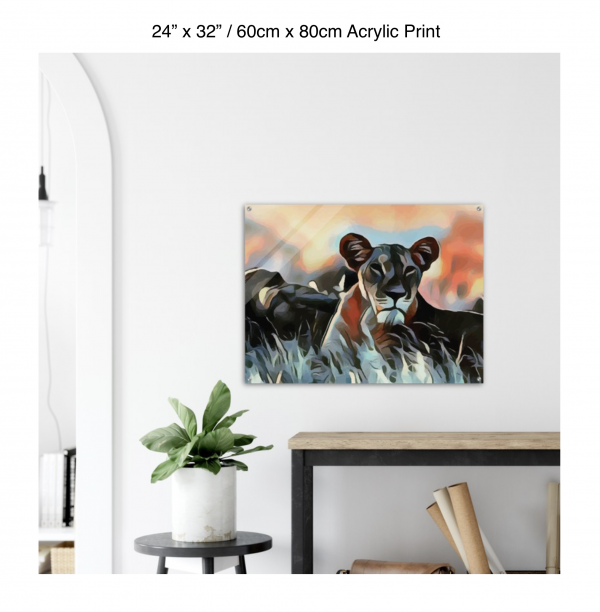 32 inch by 24 inch acrylic print of a lioness hanging over a shelf next to a small table with a plant