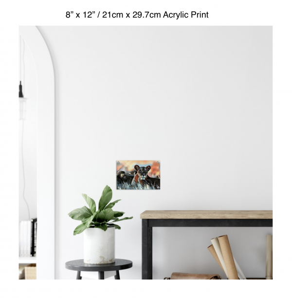 12 inch by 8 inch acrylic print of a lioness hanging over a shelf next to a small table with a plant
