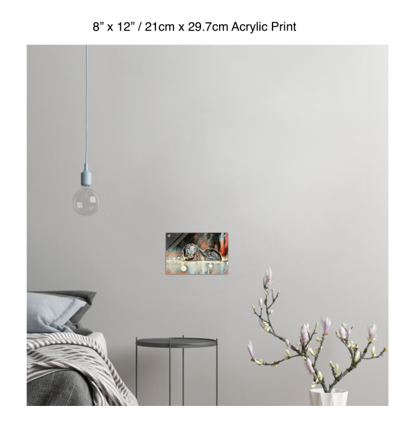 12 inch by 8 inch acrylic print of an otter hanging in a bedroom over a night table next to a small table with a plant