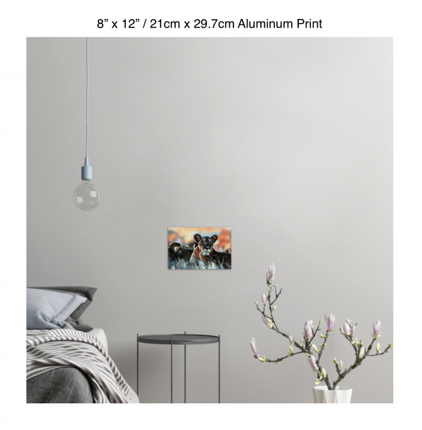 12 inch by 8 inch aluminum print of a lioness hanging in a bedroom over a night table next to a small table with a plant