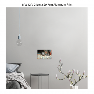 12 inch by 8 inch aluminum print of an otter hanging in a bedroom over a night table next to a small table with a plant