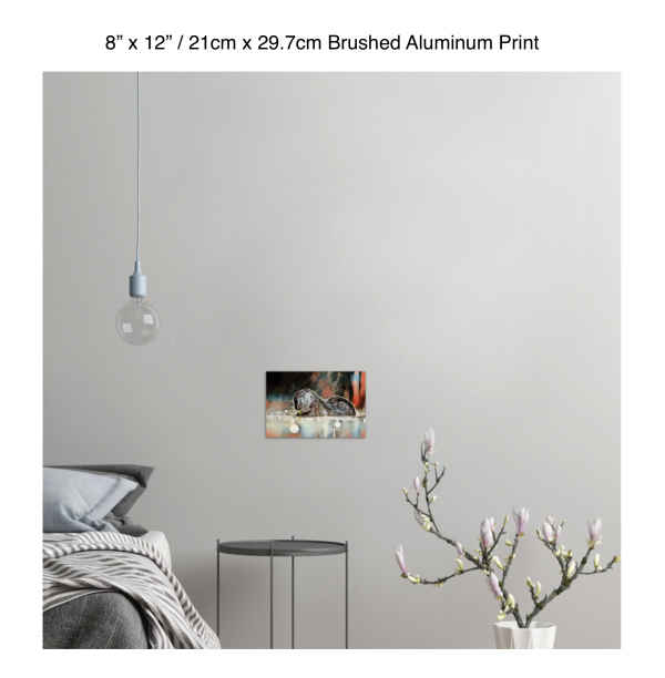 12 inch by 8 inch brushed aluminum print of an otter hanging in a bedroom over a night table next to a small table with a plant