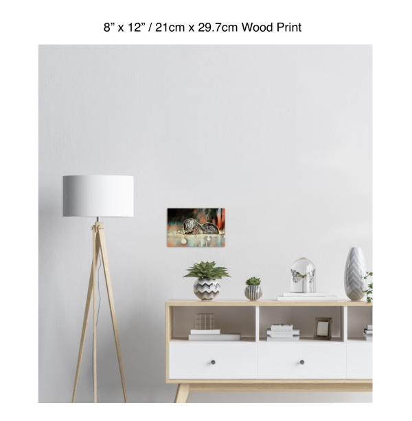 12 inch by 8 inch wood print of an otter hanging over a white credenza next to a white floor lamp