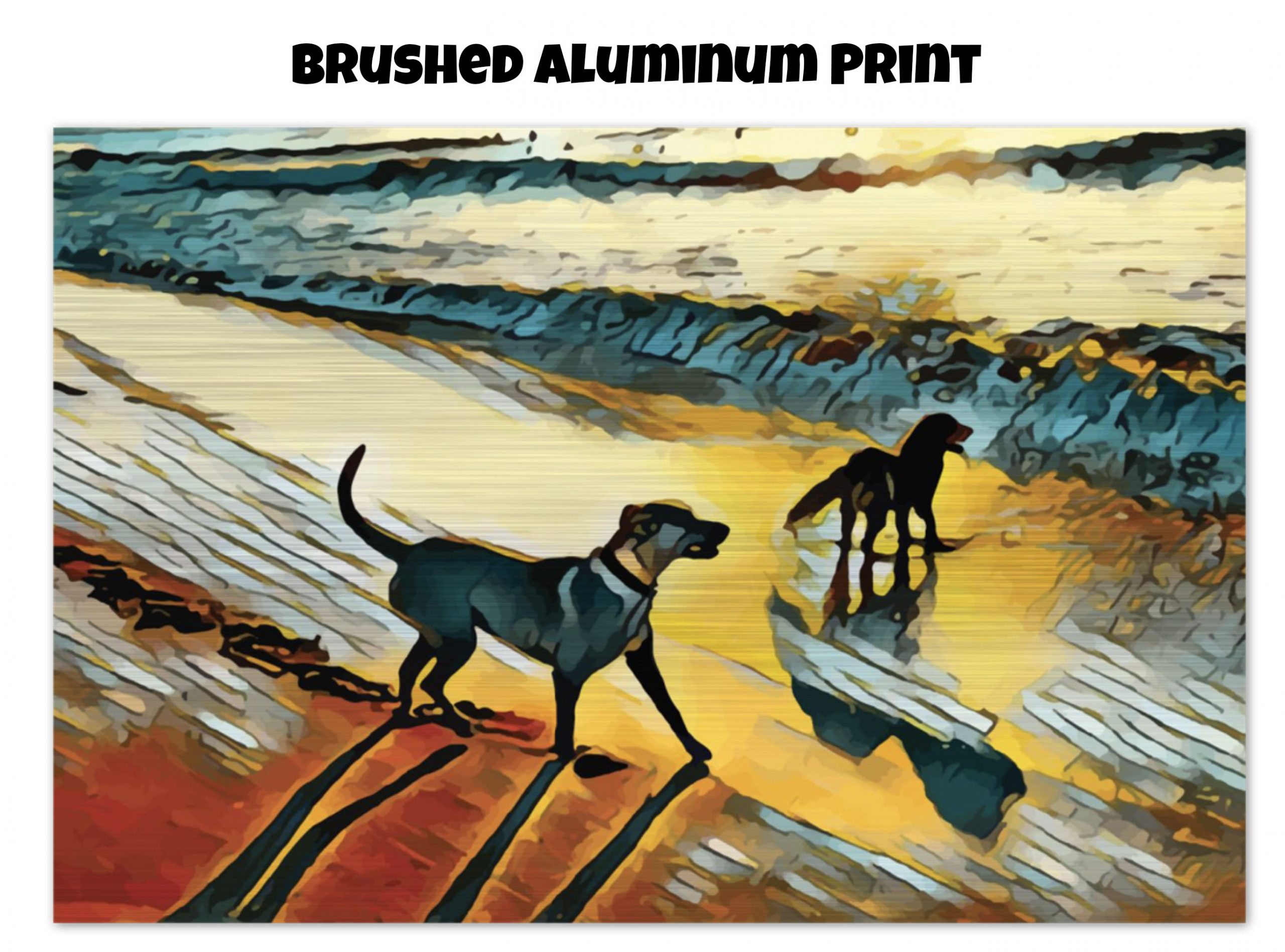 Brushed Aluminum print of two dogs wading in the surf in golden tones of a sunset