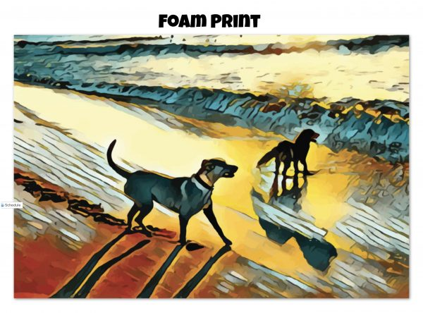 Foam print of two dogs wading in the surf in golden tones of a sunset