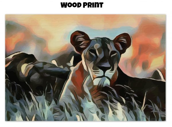 Wood print of a Lioness lying in the grass in tones of orange, blue, and gold