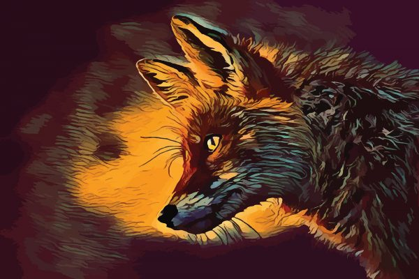 Stylized image of a fox in profile done in red and orange