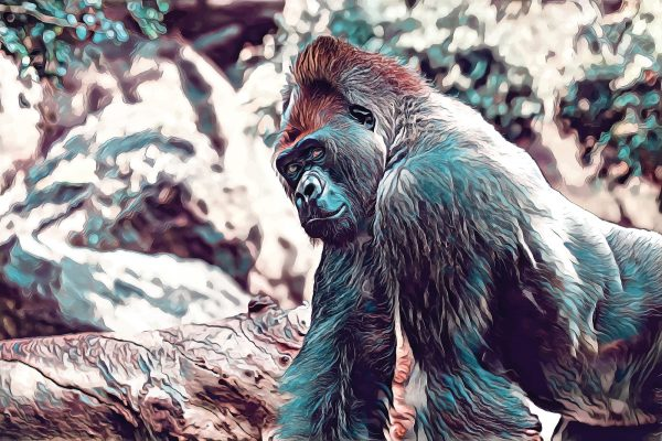 Stylized image of a gorilla walking done in blue, brown, and red.