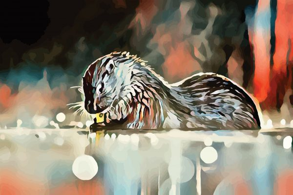Stylized image of an otter washing its hands done in blues and oranges.