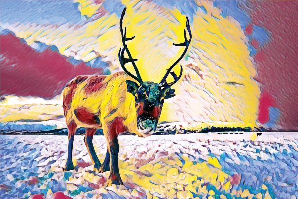 Stylized image of a reindeer in snow staring into the camera done in primary colors.